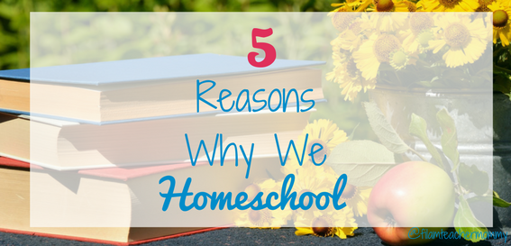 reasons why we homeschool